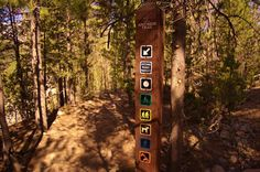The signage on this trail is great because it's well maintained and colorful. This is one of the newer signs.