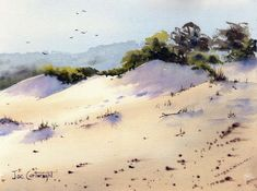 Sand Dunes Fingal Bay by Joe Cartwright - watercolor