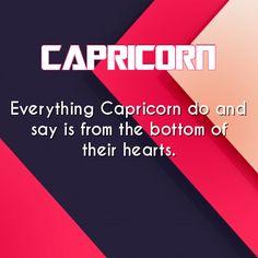 Capricorn                                                                                                                                                                                 Mais