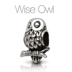 Keep our oxidized sterling silver Wise Owl by your side as a symbol of wisdom and knowledge