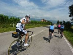Riding through vineyards with Italiaoutdoors Bike the Wine Road tours.