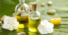 Natural first aid healing with Tamanu oil #naturalfirstaid #firstaid