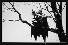 Treebats Comic Book Artists, Comic Books Art, Comic Art, I Am Batman, Batman Art, Batman Redesign, Bernie Wrightson, Fantastic Art, Nightwing