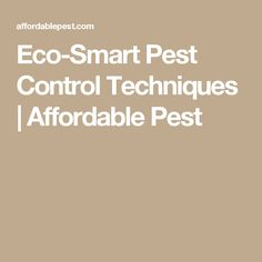 A main ingredient in eco smart is rosemary and its safe and eco smart pest control techniques affordable pest solutioingenieria Images