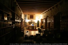 Dark Office with included large fireplace and library with a wine cellar in the middle.