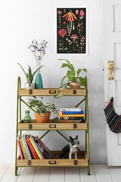 Tiered Ladder Shelf #urbanoutfitters