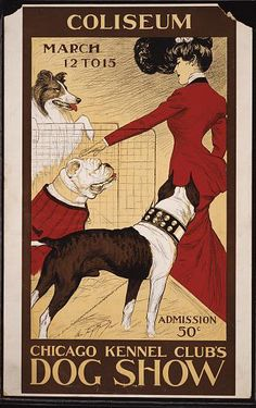 animal poster, classic posters, dog, free download, graphic design, retro prints, vintage, vintage posters, wildlife, Chicago Kennel Club's Dog Show, Coliseum - Vintage Dog Poster