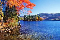 vibrant fall foliage contrasted with amazingly blue water, Lake George NY really looks just like this picture at the peak of fall foliage season every October! COPYRIGHT CREDIT: CARL HEILMAN II