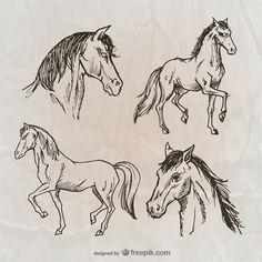 Dibujos de caballos Vector Gratis