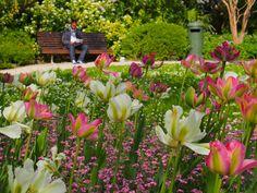 Brussels Gardens by Grant Shepherd on 500px
