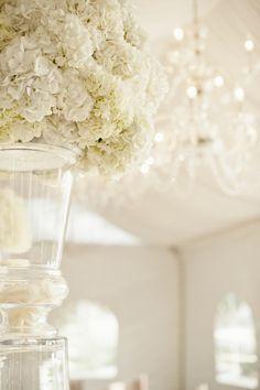 Stunning Florals at