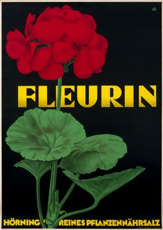 Vintage Venus - Luscious Vintage Floral and Flowers Posters and Prints. Geraniums Garden, Red Geraniums, Art Deco Posters, Vintage Posters, Poster Prints, Vintage Images, Botanical Art, Botanical Illustration, Contemporary Wall Art