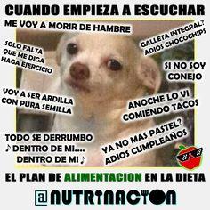 Tweets con contenido multimedia de NUTRINACION (@NUTRINACIONcom) | Twitter