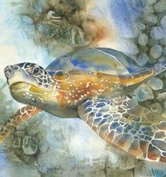 - Bring an Ancient Turtle to Life with Watercolor Watercolor Fish, Watercolor Animals, Watercolor Paintings, Watercolour, Sea Turtle Art, Turtle Love, Turtle Images, Jellyfish Art, Turtle Painting