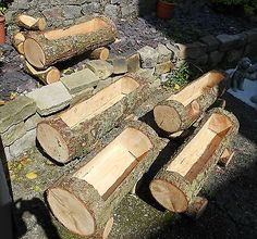 Rustic-Chainsaw-Carved-WOOD-Natural-Garden-Log-Planter-Trough-Tree-Trunk-unique These would look great in my Rustic Garden Inspiration Let's get started and learn to develop rustic furniture! If you're learning how to develop rustic furnitur Log Planter, Garden Planters, Succulents Garden, Planting Flowers, Garden Beds, Rustic Planters, Tree Stump Planter, Tree Planters, Birdcage Planter
