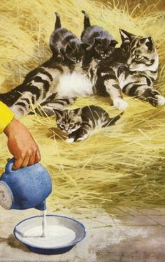 Milk for the kittens - Peter And Jane, Fun At The Farm / Ladybird Book Illustration...