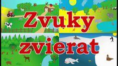🇸🇰Zvuky zvierat pre deti  - Zvieratká z farmy, Zvieratká z lesa, Zvieratká v ZOO a Morské zvieratká Farmy, Zoo, Youtube, Decor, Decoration, Decorating, Youtubers, Youtube Movies, Deco