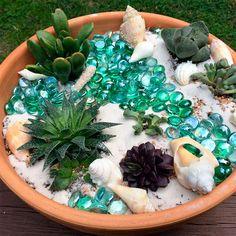 "Create an ""underwater"" garden using unique succulents in a miniature landscape."