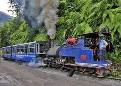 Darjeeling Himalayan Railway or Toy Trainon, famous tourist attraction, it has been UNESCO World Heritage Site since 1999  |  7 Most Exciting Train Rides To Experience Before You Die