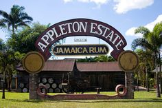 Appleton Jamaican Rum is world renowned and there is good reason.  Jamaica has some of the best rum in the world.