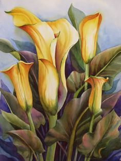 Calla Lilies Painting  - Sue Zimmerman
