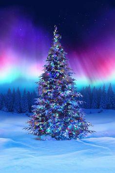 Christmas Tree Pictures, Christmas Scenery, Christmas Art, Christmas Decorations, Beautiful Christmas Pictures, Animated Christmas Tree, Christmas Landscape, Christmas Tree In Snow, Christmas Screensavers