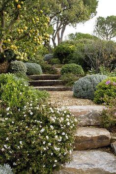 Mediterranean Garden Design, Tuscan Garden, Hillside Landscaping, Landscaping Ideas, Australian Garden, Garden Landscape Design, Unique Gardens, Garden Spaces, Garden Planning