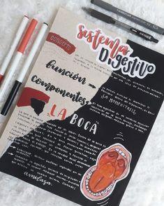 Bullet Journal Banner, Bullet Journal Notes, Bullet Journal School, Cute Notes, Pretty Notes, Study Inspiration, Bullet Journal Inspiration, Lettering Tutorial, Hand Lettering