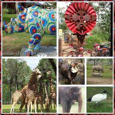 Dubbo Zoo Beautiful Places, Lion Sculpture, To Go, Australia, Statue, Country, Live, Art, Art Background