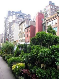 """DESIGN THOUGHTS....: Sunday """"Snippet"""" (The Flower District NYC)"""