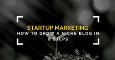 Discover how to dramatically grow a niche blog from scratch to 36000 monthly visitors using these 8 actionable lessons.