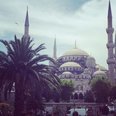 Patricia, Social Media Manager, war in Destinations, Camping, Istanbul, Taj Mahal, Around The Worlds, Social Media, Travel, Europe, Asia