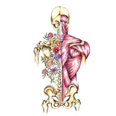 Medical Anatomy Art Stunning Watercolour Flower Skeleton and