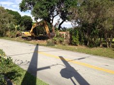 Land clearing and site prep.