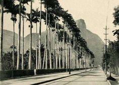 Jardim Botânico - década de 20