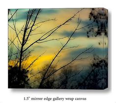 Sunset Evening Sky Tree Branches Landscape Nature 8x10 Gallery Wrap Canvas Art FREE SHIP USA