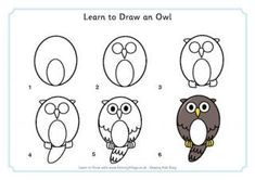 Learn to Draw an Owl