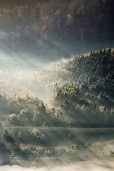 Forest Light by Andreas Wonisch Beautiful Photos Of Nature, Nature Images, Amazing Nature, Nature Photos, Beautiful World, Beautiful Images, Forest Light, The Mountains Are Calling, Ciel