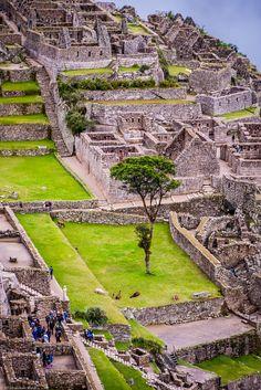 Machu Picchu, Peru by samwz