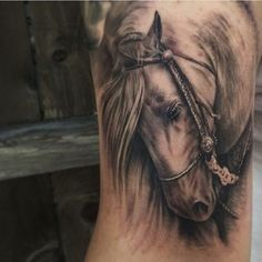 What does horse tattoo mean? We have horse tattoo ideas, designs, symbolism and we explain the meaning behind the tattoo. Head Tattoos, Body Art Tattoos, Sleeve Tattoos, Tattoo Designs And Meanings, Tattoos With Meaning, Pinterest Tattoo Ideas, Tattoo Life, Horse Tattoo Design, Tattoo Horse