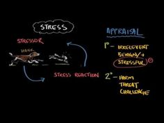 ▶ What is stress? - YouTube