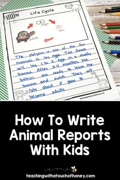 Ready to create animal research projects with your grade one, grade two, and grade three students? Support your students through each stage of the report writing process as they write their animal reports. Informative writing can be a challenge for kids. Make it is easy with these differentiated templates. BUY NOW! Teach W.1.2, W.1.5, W.2.2, W.2.5, W.3.2, and W.3.5 with animal reports. Writing Lesson Plans, Writing Lessons, Writing Process, Writing Resources, Writing Skills, Writing Activities, Informational Writing, Informative Writing, Create An Animal