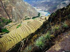 Portal Machu Picchu - Google+ Andenes de cultivos Incas en la ciudad de Pisac. Cusco, Peru.