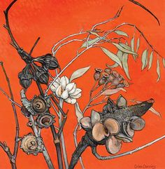 Important Australian & International Art - Criss Canning - Native Seed Pods Australian Wildflowers, Australian Native Flowers, Australian Artists, Botanical Drawings, Botanical Art, Botanical Illustration, Illustration Art, Kitsch, Foto Art