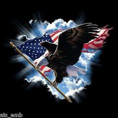 Patriotic Bald Eagle American Flag T-Shirt Eagle in Clouds Freedom Military Patriotic Pictures, Eagle Pictures, Eagle Images, Usa Pictures, I Love America, God Bless America, America America, American Pride, American Flag