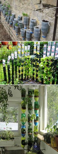 Plastic bottle vertical garden is a great way to reuse the throwaway bottles, grow plants in limited space and also conserve the water. With simple steps, a few plastic bottles and our ideas below, you can easily create a trendy vertical garden. Vegetable Garden Planner, Vegetable Gardening, Diy Plastic Bottle, Recycled Plastic Bottles, Plastic Bottle Greenhouse, Tower Garden, Recycled Garden, Wooden Garden, Bottle Garden