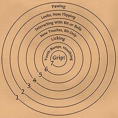 """Shirley Chong's Website:  Check out this very cool bull's eye diagram for teaching a dog to fetch.  Shirley has SO MUCH FREE STUFF on her website, including 2 great free E-books on clicker training. She even offers them in large print!! You cannot go wrong by using Shirley's """"formulas"""" for teaching with a CR, conditioned reinforcer (clicker), and positive reinforcement.  Shirley also maintains a great discussion list - can't recommend it enough. You can join on her website…"""