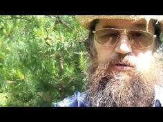 Лечебное варенье из сосновых шишек - YouTube