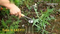 Manual Multifunction Weeder Transplant Tool - Top Gardening Tips for Beginners Vegetable Garden Design, Garden Tools, Garden Ideas, Garden Projects, Horticulture, Organic Gardening, Gardening Tips, Pallet Gardening, Flower Gardening