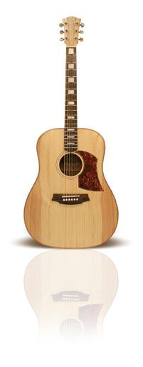 The best acoustic guitar I have ever played and half the price of a Taylor or Takamini. Cole Clark FL2a Bunya/Maple. With Block inlays and DIAP>